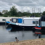 Boat Hire and Mooring Management